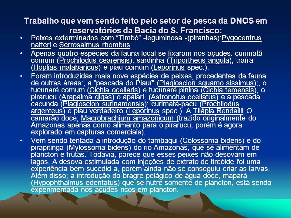 Trabalho que vem sendo feito pelo setor de pesca da DNOS em reservatórios da Bacia do S. Francisco: