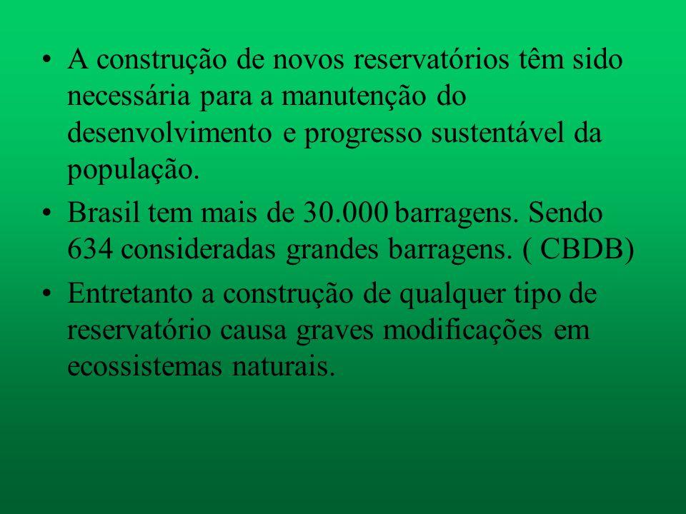 A construção de novos reservatórios têm sido necessária para a manutenção do desenvolvimento e progresso sustentável da população.