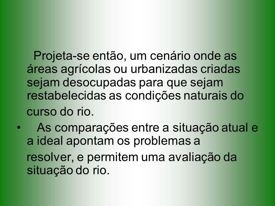 Projeta-se então, um cenário onde as áreas agrícolas ou urbanizadas criadas sejam desocupadas para que sejam restabelecidas as condições naturais do
