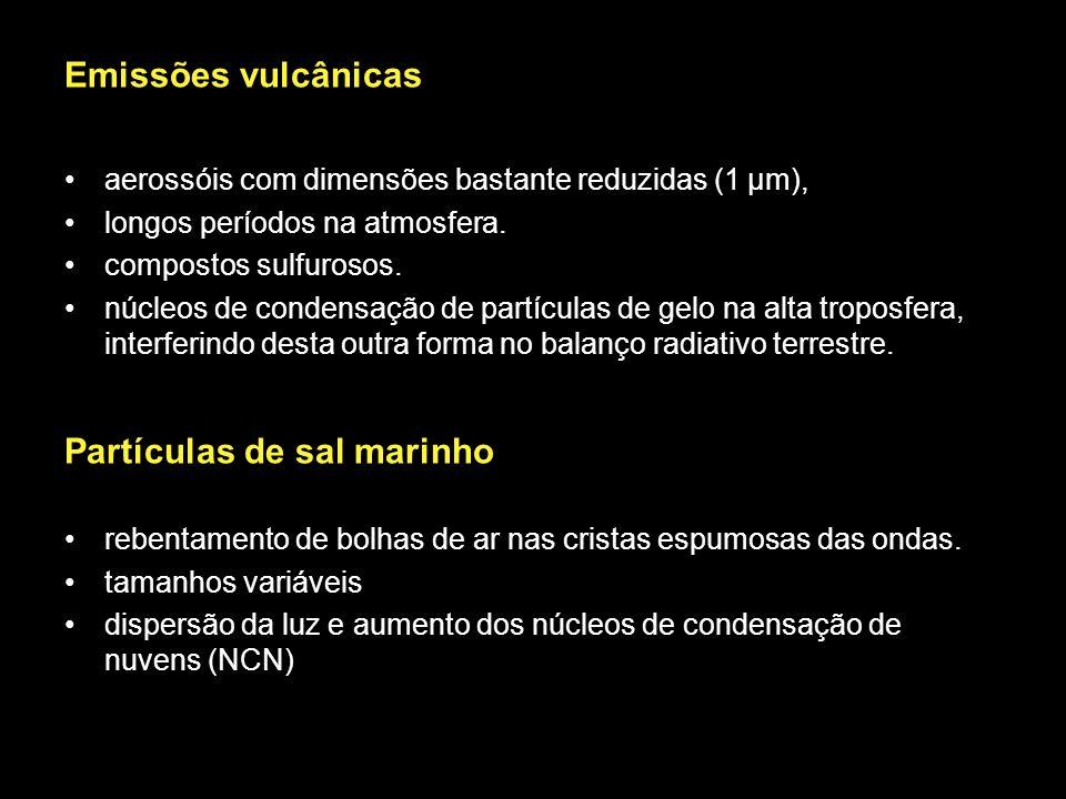 Partículas de sal marinho