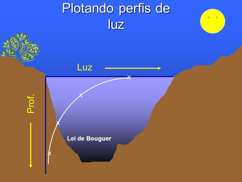 Plotando perfis de luz Luz Prof. x x x x Lei de Bouguer