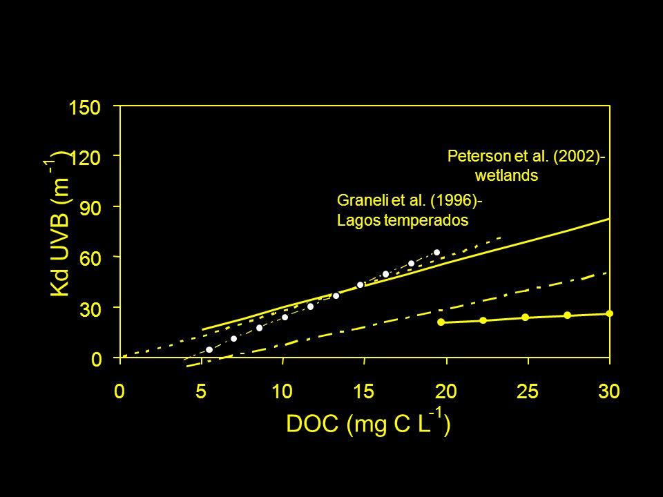 150 ) 120. Peterson et al. (2002)- -1. wetlands. Graneli et al. (1996)- 90. Lagos temperados.