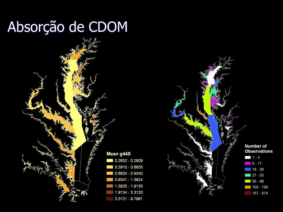 Absorção de CDOM