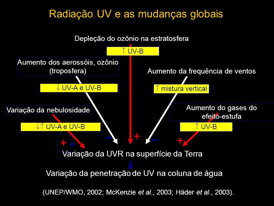 + + + Radiação UV e as mudanças globais