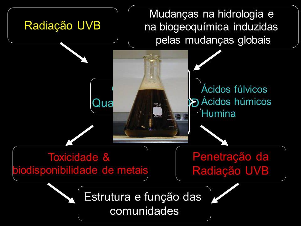 Radiação UVB Qualidade & Quantidade da MOD Penetração da Radiação UVB