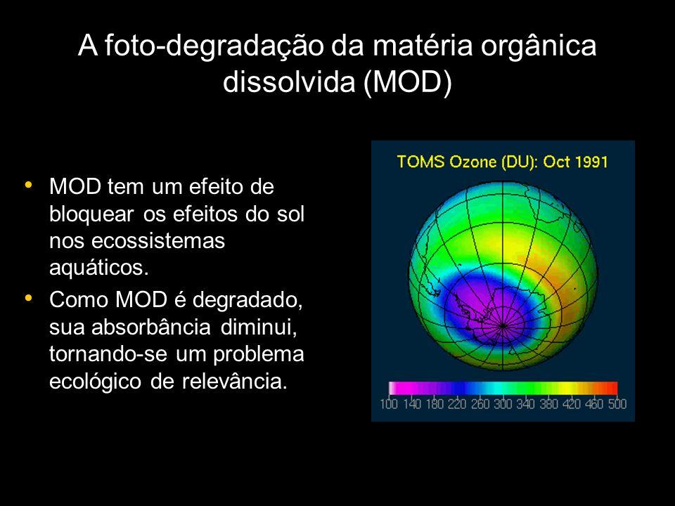 A foto-degradação da matéria orgânica dissolvida (MOD)