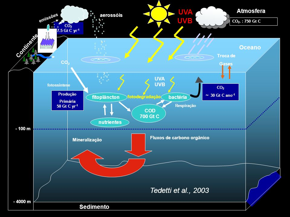 Tedetti et al., 2003 Atmosfera Continente Oceano Sedimento aerossóis
