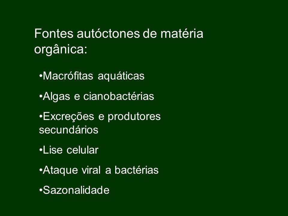 Fontes autóctones de matéria orgânica: