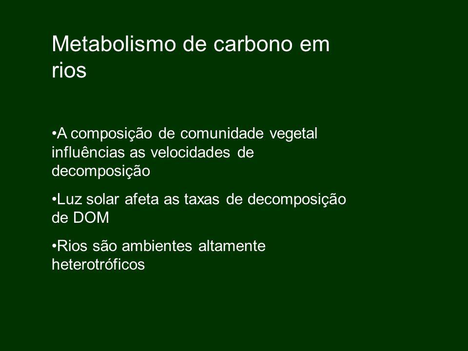 Metabolismo de carbono em rios