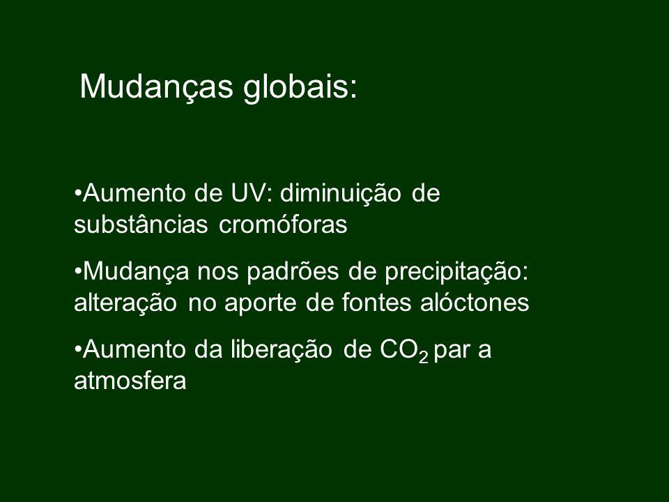 Mudanças globais: Aumento de UV: diminuição de substâncias cromóforas
