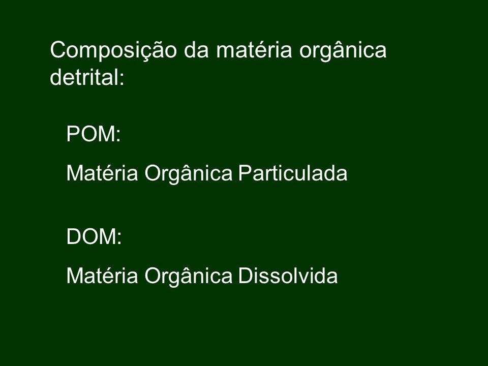 Composição da matéria orgânica detrital: