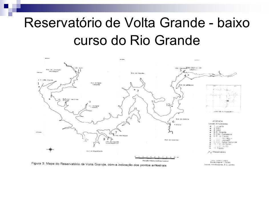 Reservatório de Volta Grande - baixo curso do Rio Grande
