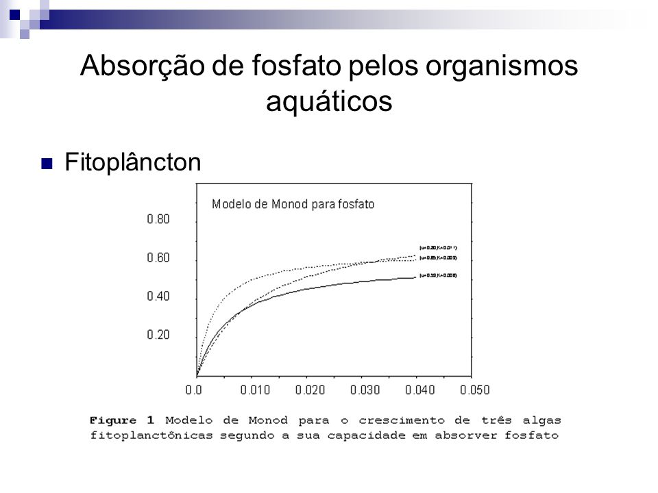 Absorção de fosfato pelos organismos aquáticos