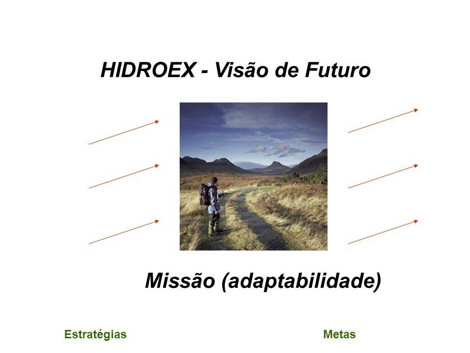 HIDROEX - Visão de Futuro