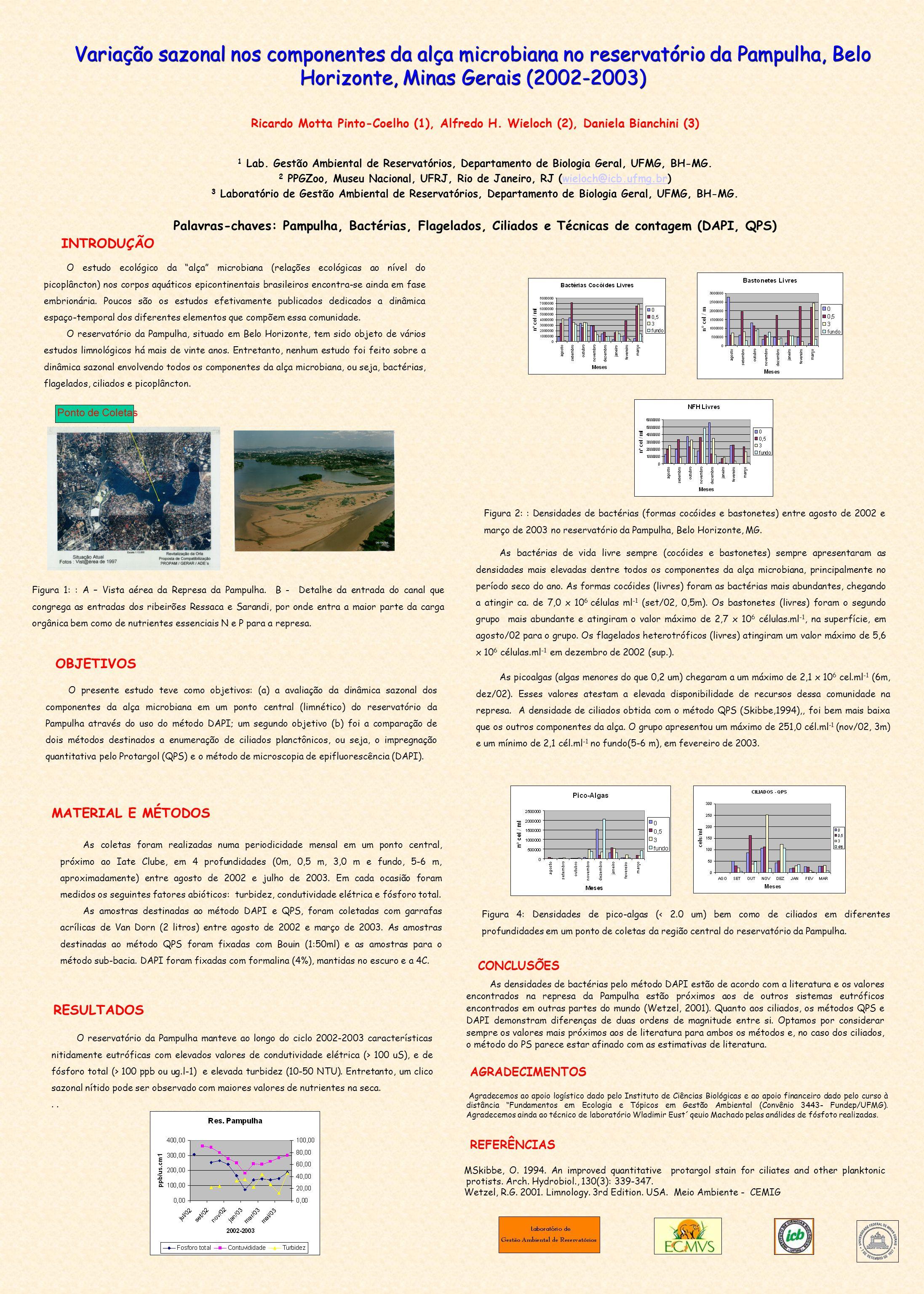 Variação sazonal nos componentes da alça microbiana no reservatório da Pampulha, Belo Horizonte, Minas Gerais (2002-2003)