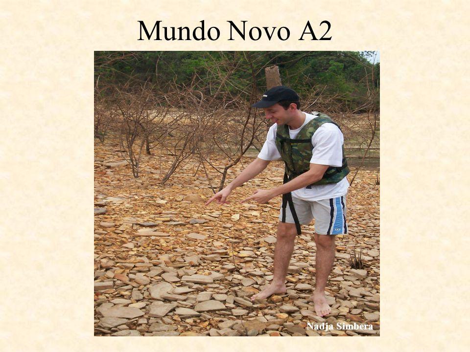 Mundo Novo A2 Nadja Simbera