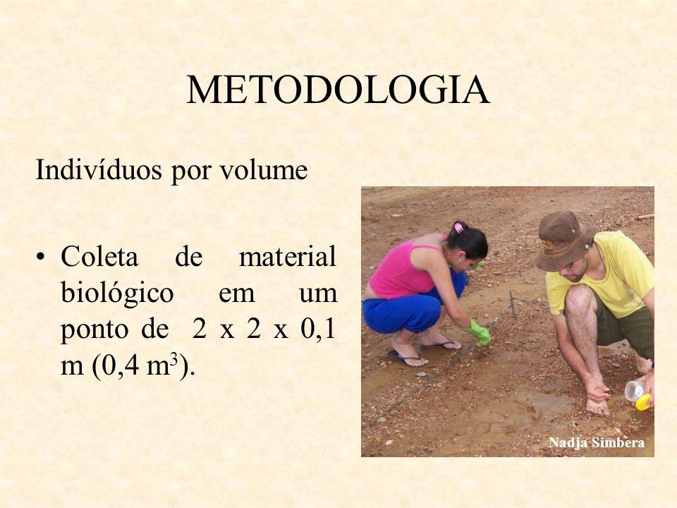 METODOLOGIA Indivíduos por volume