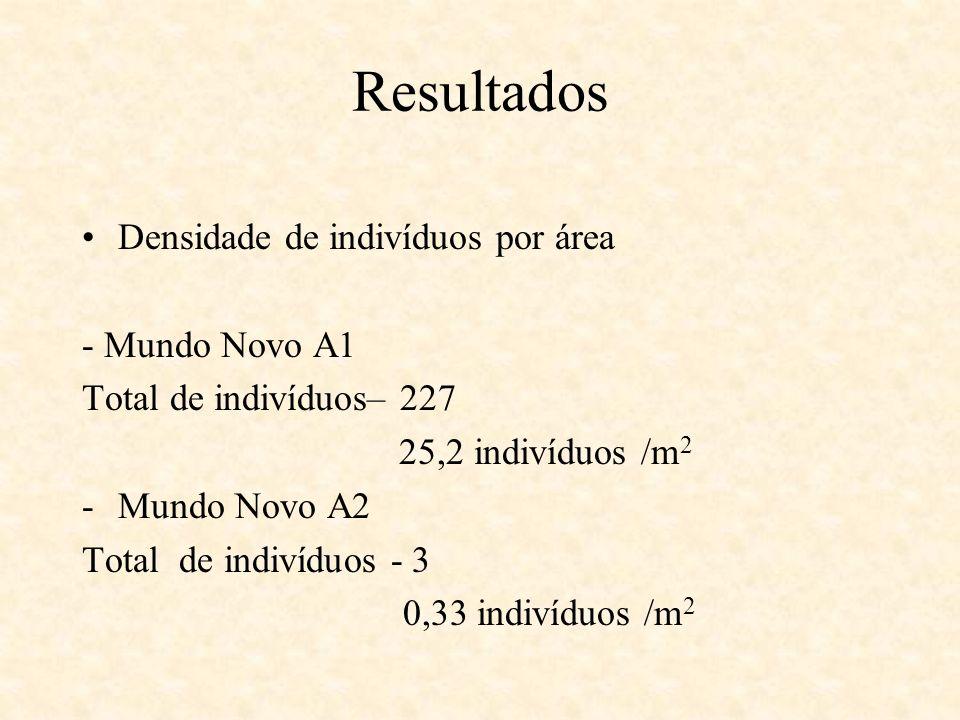 Resultados Densidade de indivíduos por área - Mundo Novo A1
