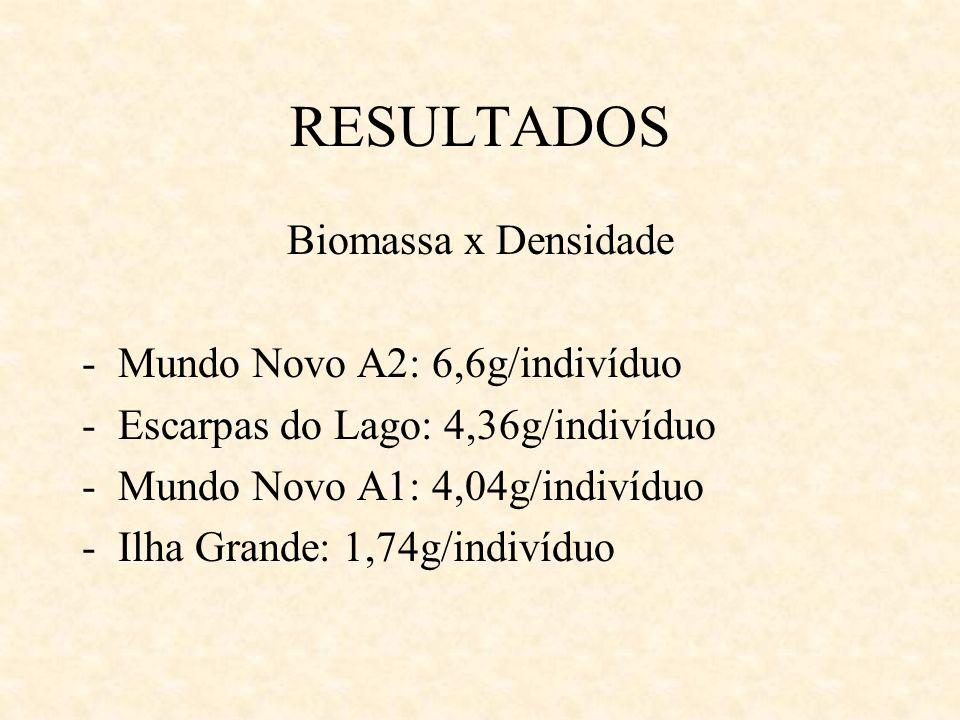 RESULTADOS Biomassa x Densidade Mundo Novo A2: 6,6g/indivíduo