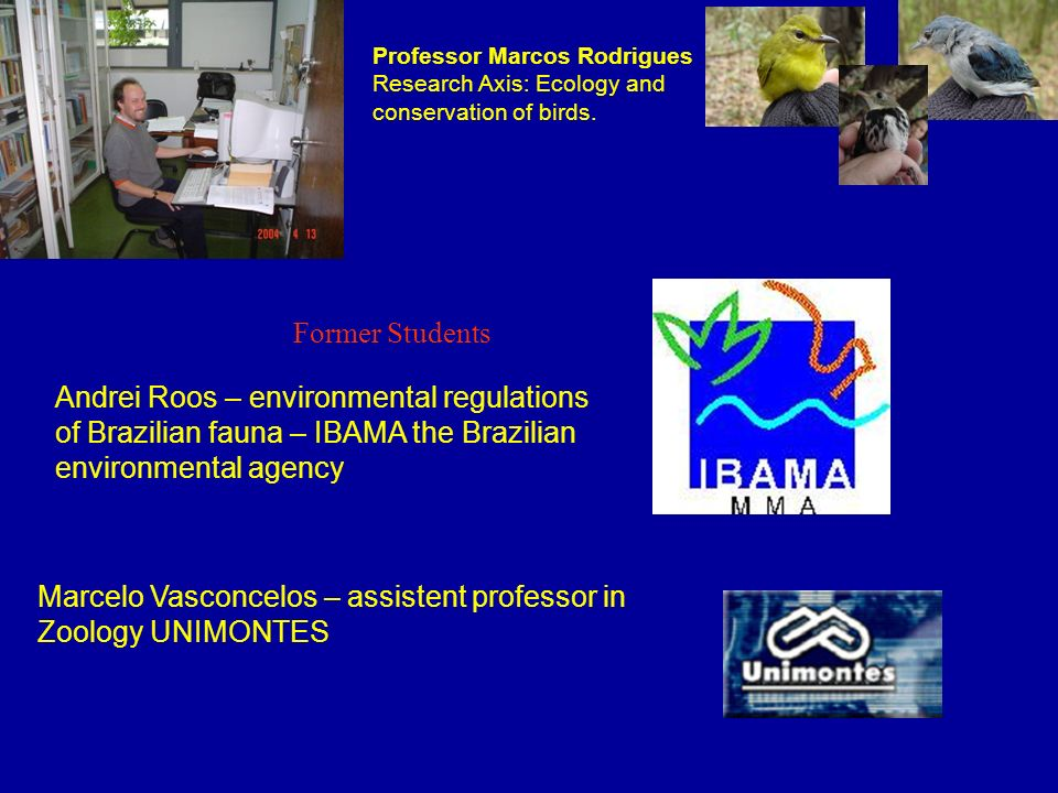Marcelo Vasconcelos – assistent professor in Zoology UNIMONTES