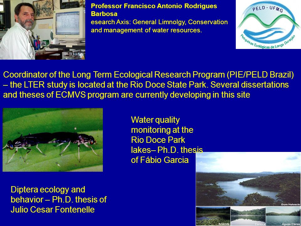 Diptera ecology and behavior – Ph.D. thesis of Julio Cesar Fontenelle