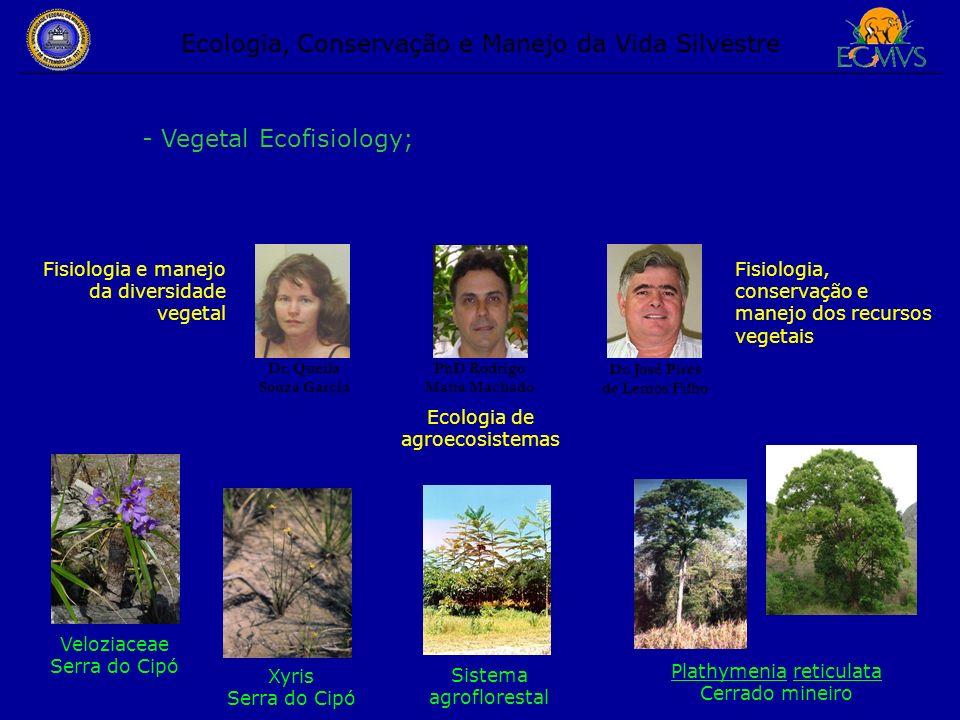 Ecologia, Conservação e Manejo da Vida Silvestre