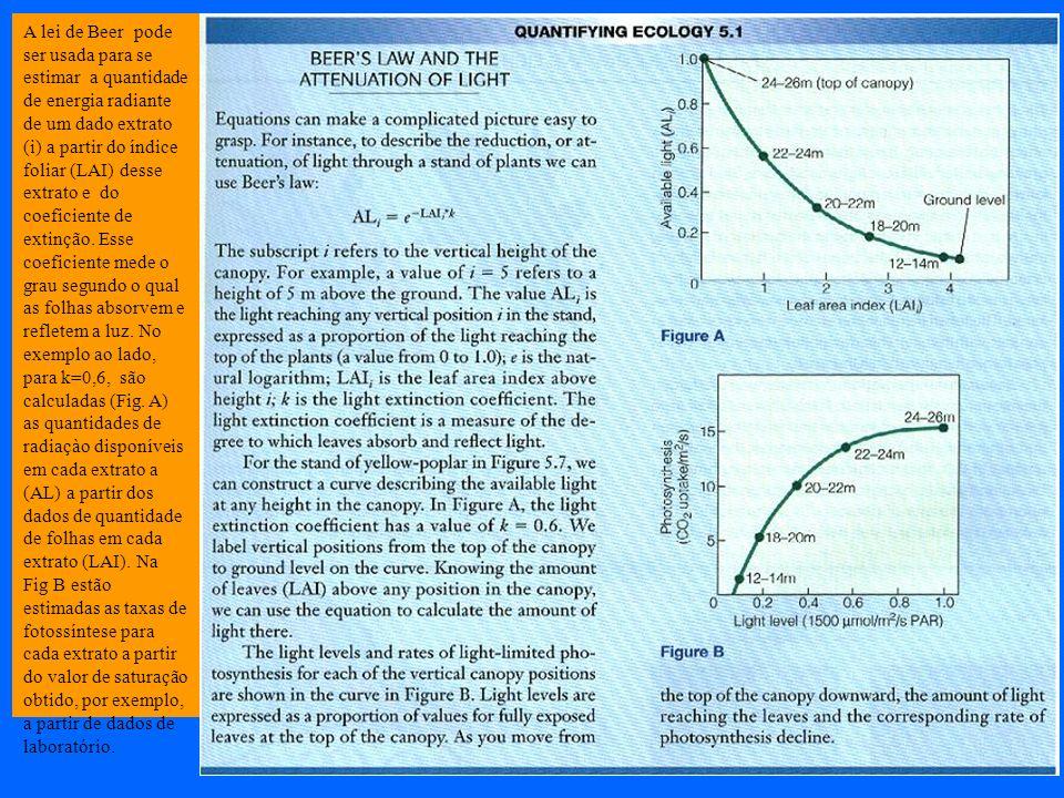 A lei de Beer pode ser usada para se estimar a quantidade de energia radiante de um dado extrato (i) a partir do índice foliar (LAI) desse extrato e do coeficiente de extinção.