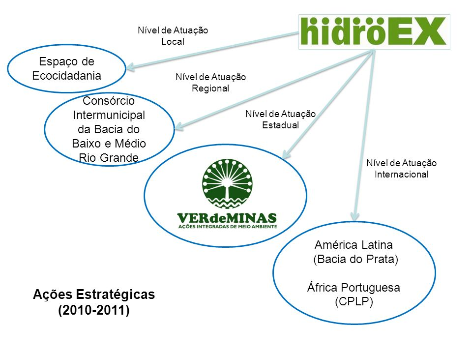 Ações Estratégicas (2010-2011)