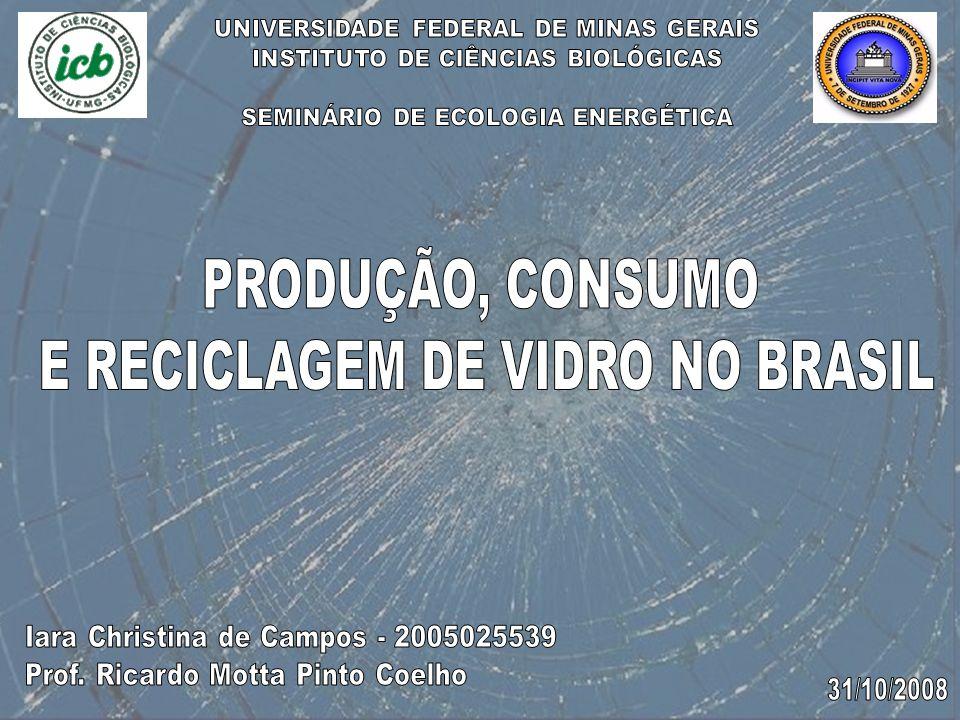 E RECICLAGEM DE VIDRO NO BRASIL