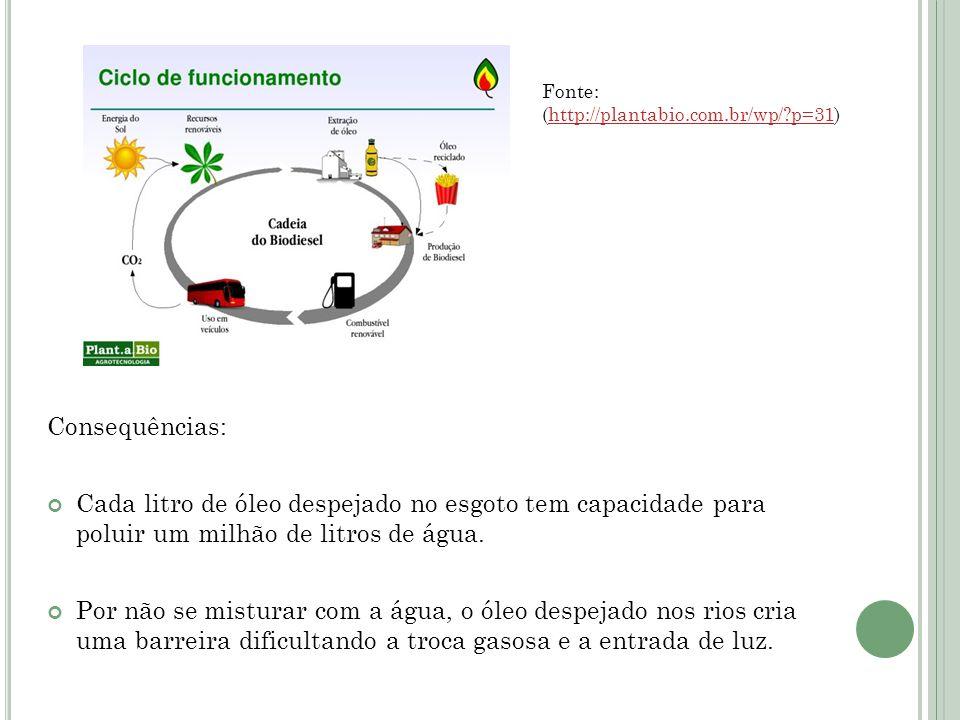 Fonte: (http://plantabio.com.br/wp/ p=31)