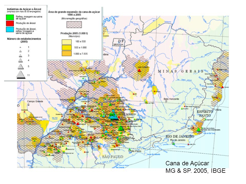 Cana de Açúcar MG & SP. 2005, IBGE
