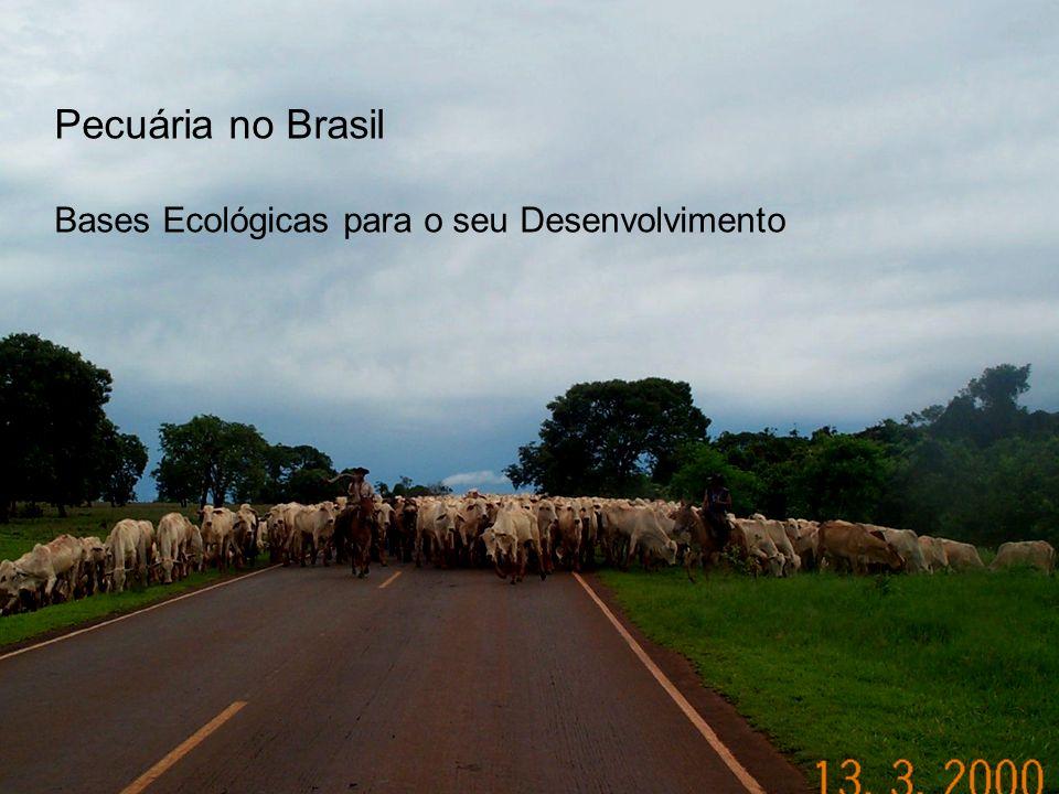 Pecuária no Brasil Bases Ecológicas para o seu Desenvolvimento