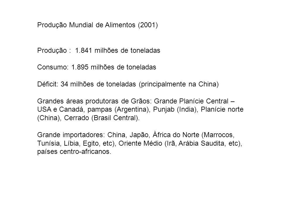 Produção Mundial de Alimentos (2001)