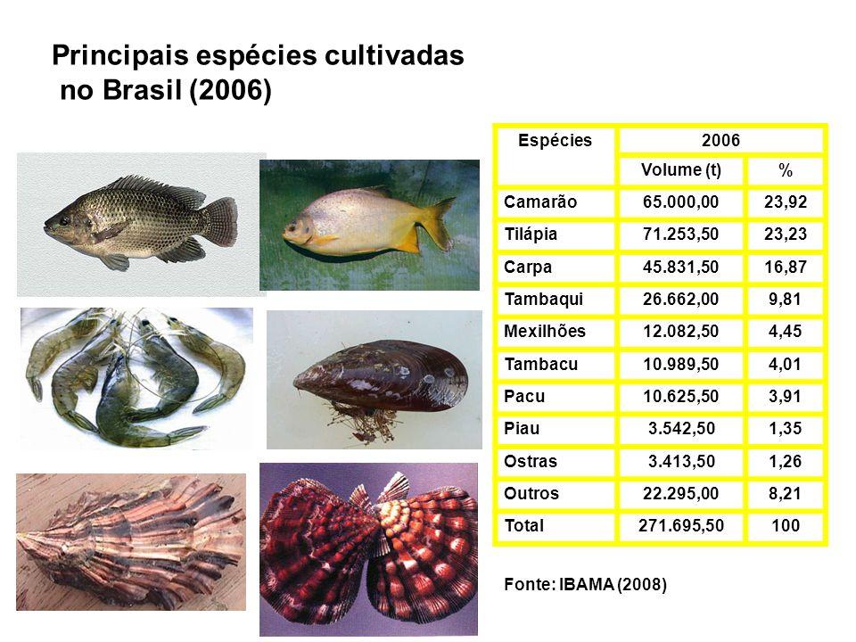 Principais espécies cultivadas no Brasil (2006)