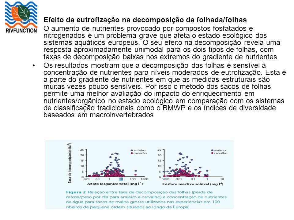 Efeito da eutrofização na decomposição da folhada/folhas