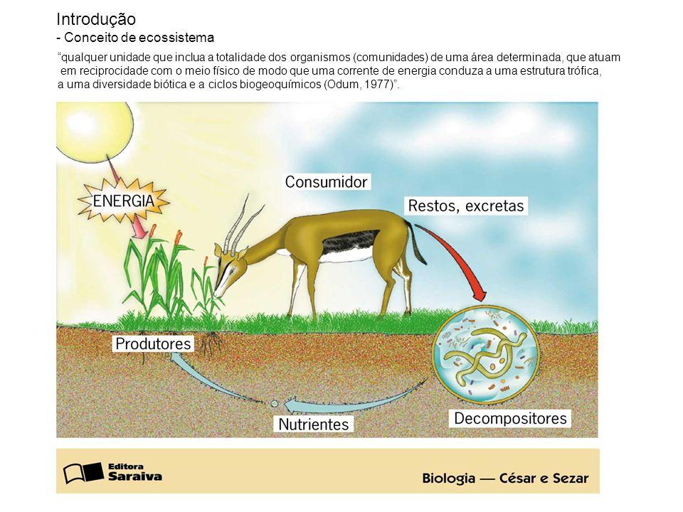 Introdução - Conceito de ecossistema