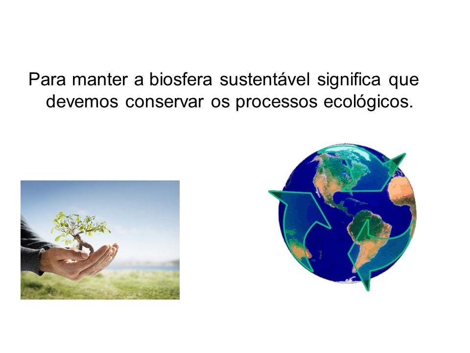 Para manter a biosfera sustentável significa que devemos conservar os processos ecológicos.