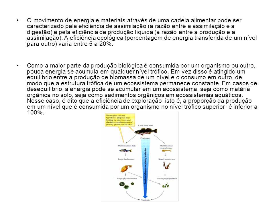 O movimento de energia e materiais através de uma cadeia alimentar pode ser caracterizado pela eficiência de assimilação (a razão entre a assimilação e a digestão) e pela eficiência de produção líquida (a razão entre a produção e a assimilação). A eficiência ecológica (porcentagem de energia transferida de um nível para outro) varia entre 5 a 20%.