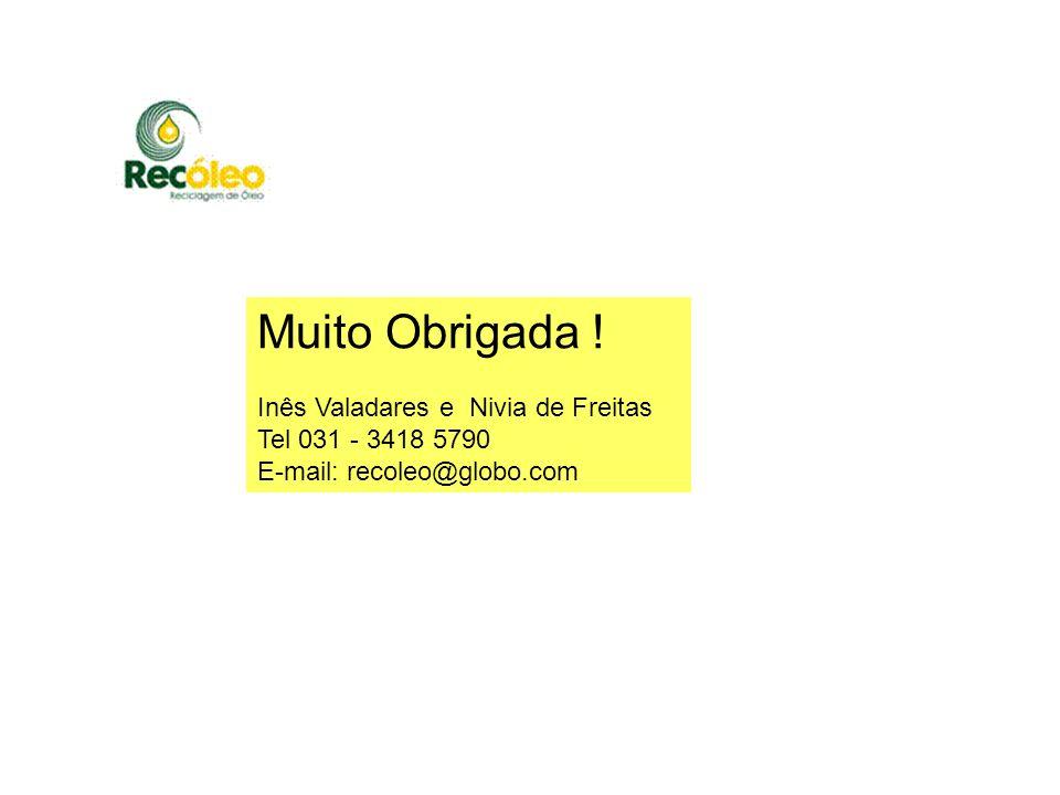 Muito Obrigada ! Inês Valadares e Nivia de Freitas Tel 031 - 3418 5790