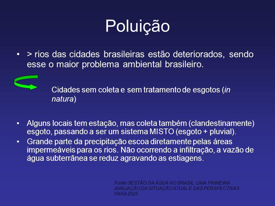 Poluição > rios das cidades brasileiras estão deteriorados, sendo esse o maior problema ambiental brasileiro.