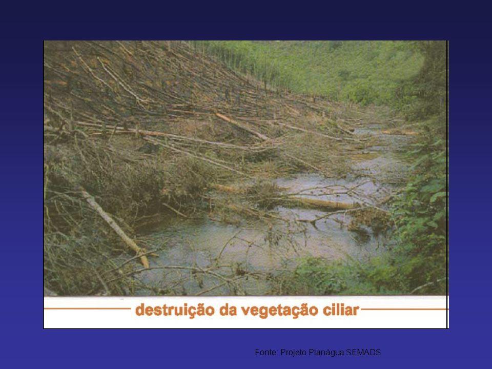 Fonte: Projeto Planágua SEMADS
