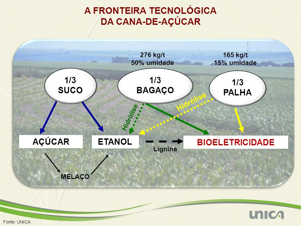 A FRONTEIRA TECNOLÓGICA