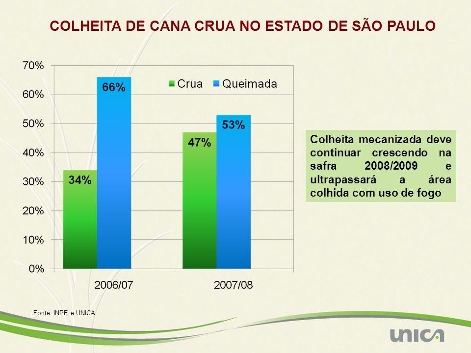 COLHEITA DE CANA CRUA NO ESTADO DE SÃO PAULO