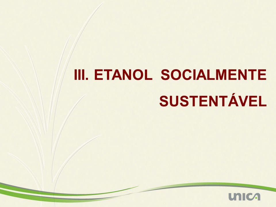 III. ETANOL SOCIALMENTE SUSTENTÁVEL