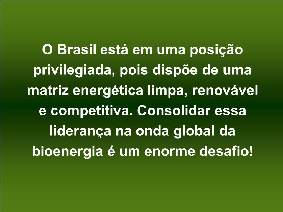 O Brasil está em uma posição privilegiada, pois dispõe de uma matriz energética limpa, renovável e competitiva.