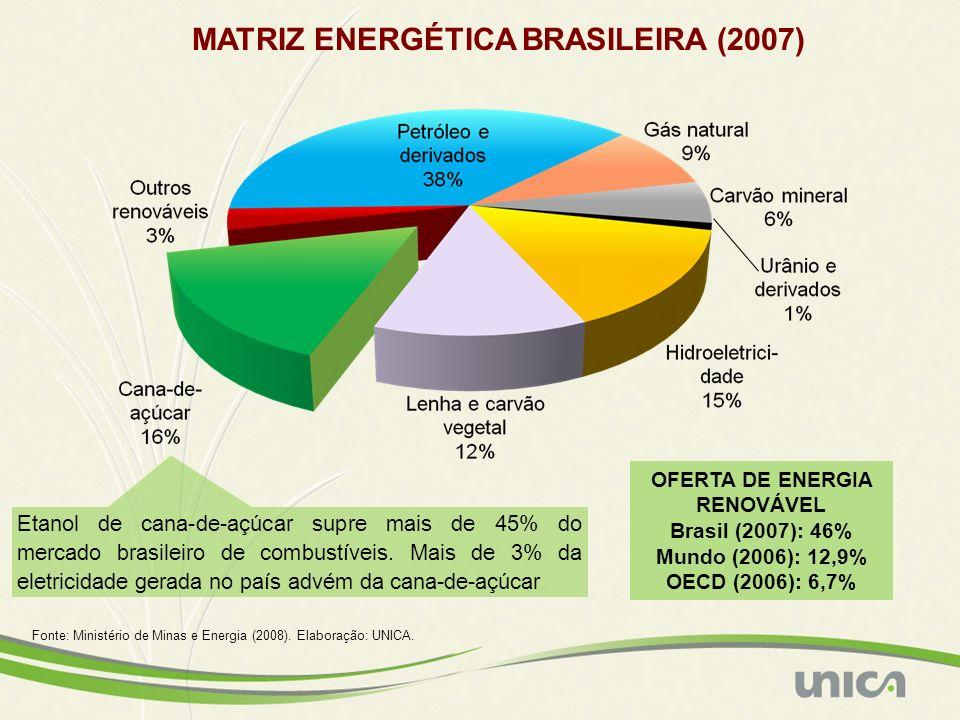 MATRIZ ENERGÉTICA BRASILEIRA (2007)