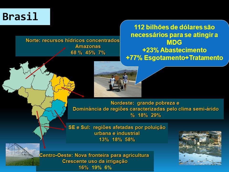 Brasil 112 bilhões de dólares são necessários para se atingir a MDG