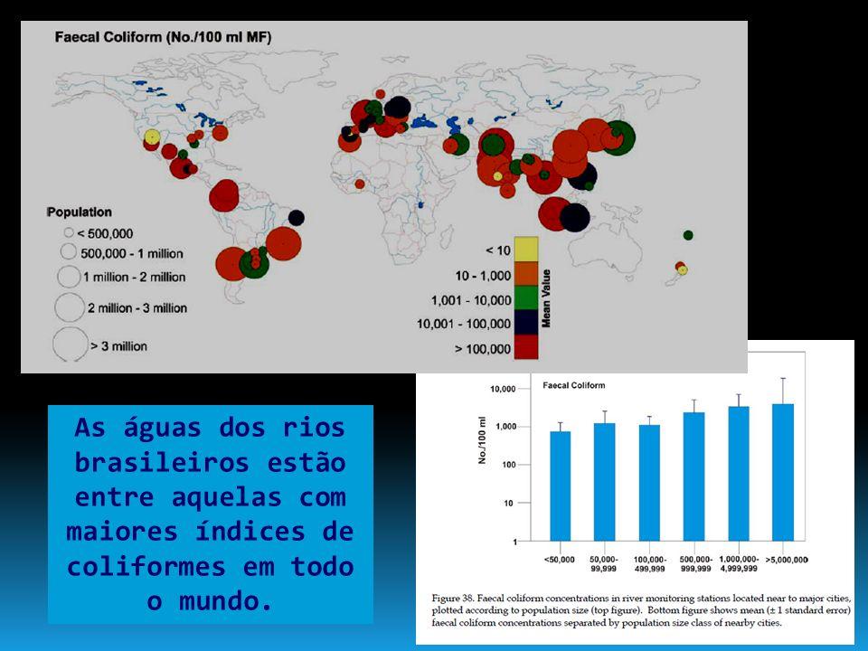 As águas dos rios brasileiros estão entre aquelas com maiores índices de coliformes em todo o mundo.