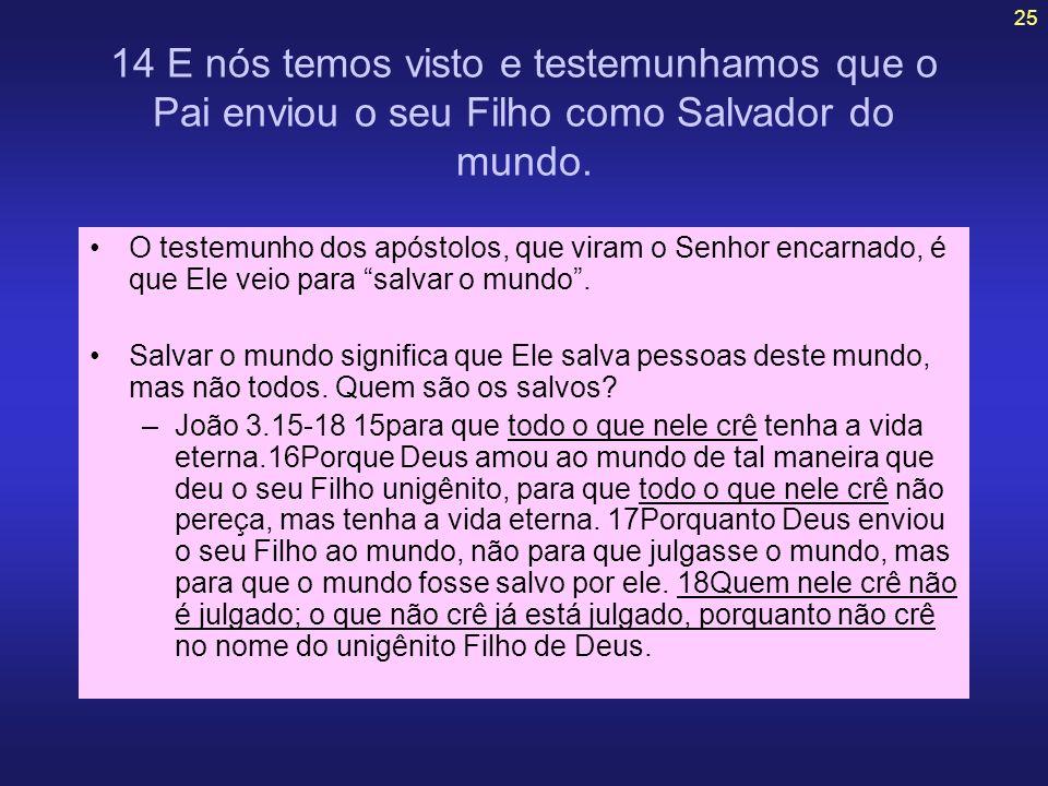 14 E nós temos visto e testemunhamos que o Pai enviou o seu Filho como Salvador do mundo.