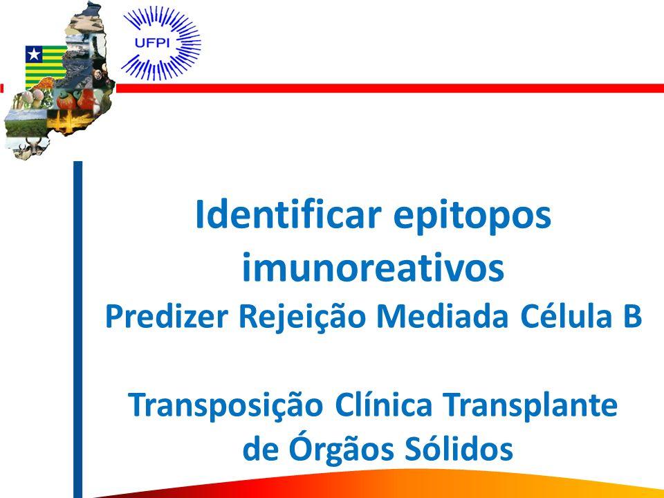 Identificar epitopos imunoreativos